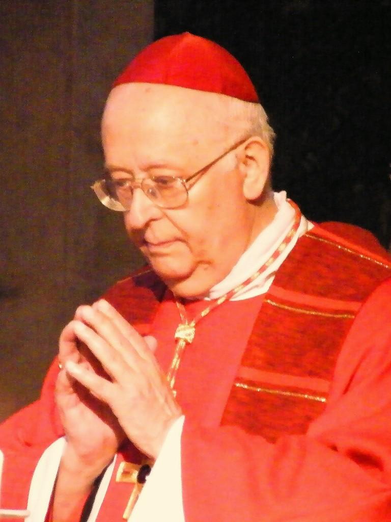 Kardinal Sterzinsky bei einer Firmung 2010 Foto: Björn Hensel