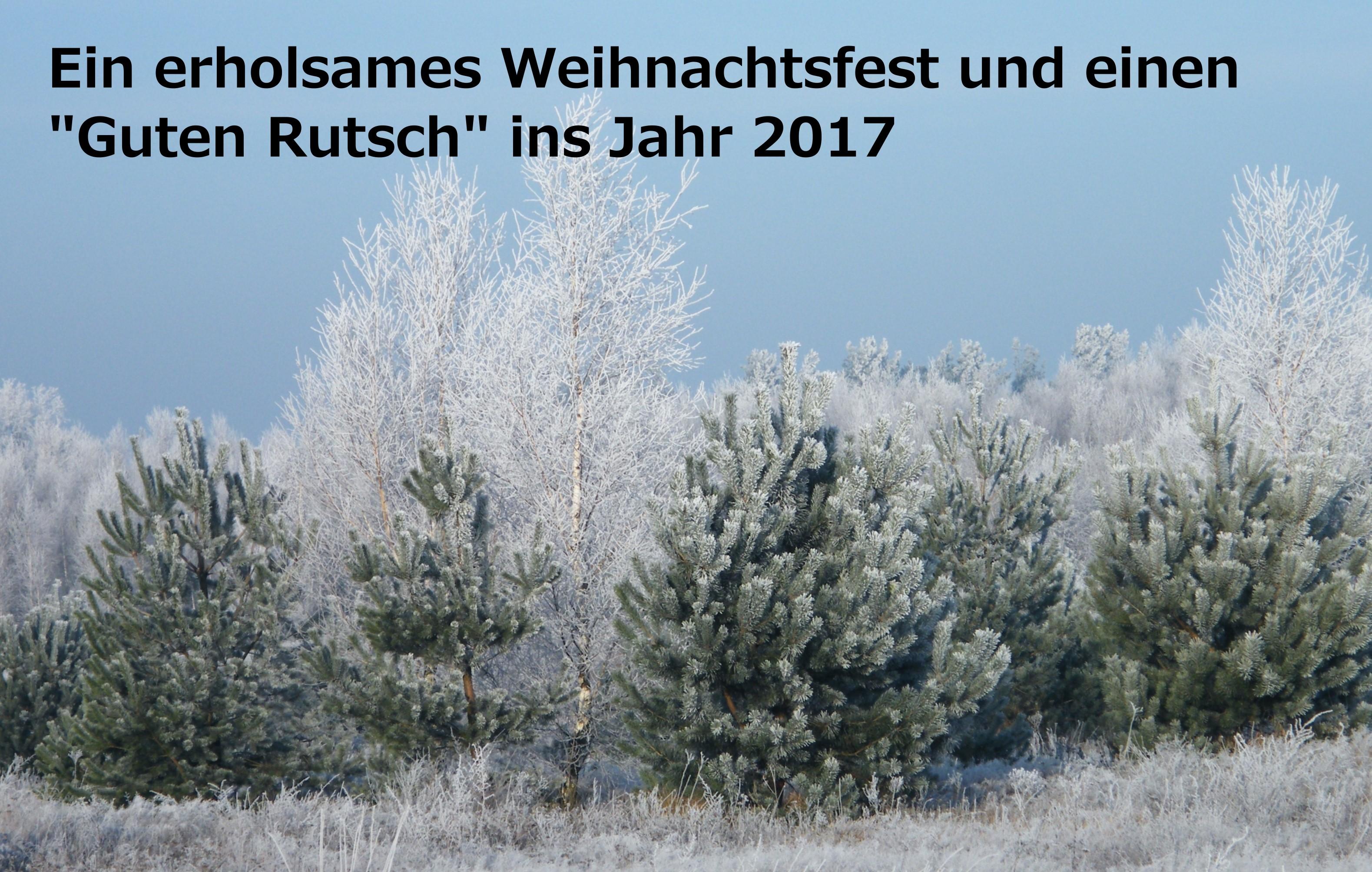 weihnachtsfoto-2017